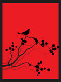 Chiqueiro japonês do zen da flor da mola Foto de Stock Royalty Free