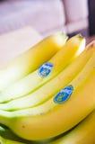 Chiquita banany Zdjęcie Stock