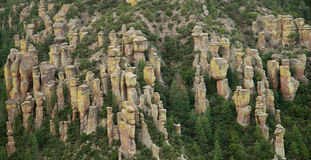 Chiricahua nationales Denkmal, Arizona Stockfoto
