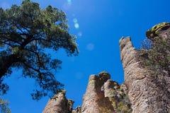 Chiricahua stenar Fotografering för Bildbyråer