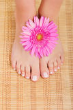 Chiropody Stock Photo