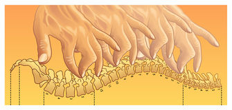 chiropractic ilustração do vetor