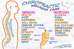 Chiropractic wellness care therapy related words. For chiropractic related work Stock Image