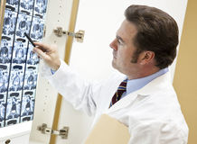 Chiropractor Examines CT Scan. Chiropractor examines a CT scan of a patient's spine Royalty Free Stock Photo