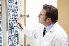 Chiropractor Examines Scan Stock Images