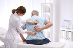Chiropractor examining patient with back pain. In clinic royalty free stock image