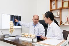 Discussing spine x-ray. Chiropractors analyzing spine x-ray on the wall royalty free stock photos