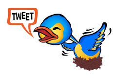 Chirping Stock Images