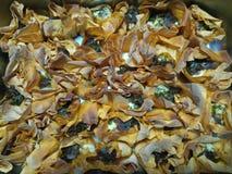 Chirpy горячие сваренные tartlets сыра коз с сладостным бальзамическим луком Стоковые Фотографии RF