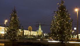 Chirstmas trees, Moscow Royalty Free Stock Images