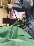 Chirurdzy używa chirurgicznie instrumenty dla keyhole operacji, ogląda monitoru z wewnątrz pacjenta abdo który pokazów wizerunki zdjęcie royalty free