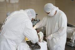 Chirurgen bei der Arbeit stockbilder