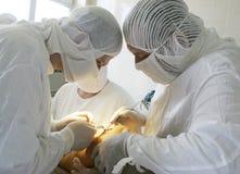 Chirurgen op het werk Royalty-vrije Stock Foto's