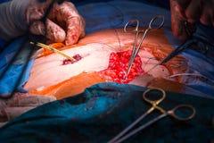 Chirurgie dans un hôpital moderne étant exécutée Images libres de droits