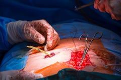 Chirurgie in einem modernen Krankenhaus, die durchgeführt wird stockfotografie