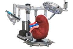 Chirurgie robotique du concept de rein, rendu 3D illustration libre de droits