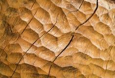 Chiseled wood Royalty Free Stock Image