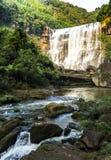 Chishui har härliga berg, härligt landskap, skogtäckningen, som är i det Guizhou landskapet Arkivbilder