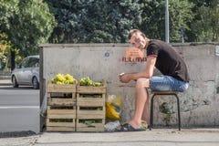 CHISINAU, MOLDAU - 11 AOÛT 2015 : Jeune homme s'asseyant sur un tabouret vendant des raisins dans la capitale de Moldau Image stock