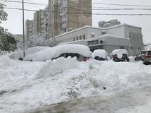 Heavy snowfall hits Chisinau in the middle of spring royalty free stock photography