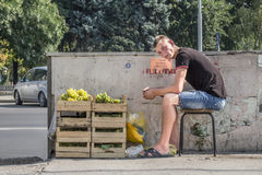 CHISINAU, MOLDOVA - AUGUST 11, 2015: Young man sitting on a stool selling grapes in the capital city of Moldova. stock image