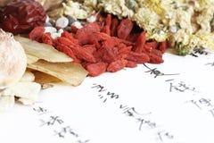 chińska ziołowa medycyna Fotografia Royalty Free