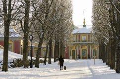 Chiński pawilonu wintertime Obrazy Royalty Free