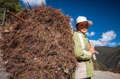 Chiński rolnik Obraz Royalty Free