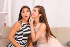 Chisme de dos muchachas en fondo gris Imágenes de archivo libres de regalías