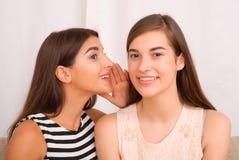 Chisme de dos muchachas en fondo gris Foto de archivo