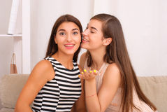 Chisme de dos muchachas en fondo gris Fotografía de archivo libre de regalías