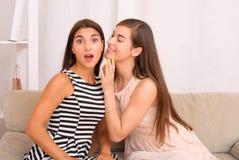 Chisme de dos muchachas en fondo gris Fotos de archivo libres de regalías