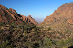 Chisos Mountains Landscape Stock Image