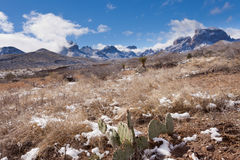 Chisos Mountains snowy desert Big Bend NP Texas Royalty Free Stock Photography