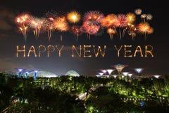 Chispa del fuego artificial de la Feliz Año Nuevo con los jardines por la bahía en la noche Foto de archivo libre de regalías