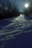 Chispas del invierno Fotos de archivo libres de regalías