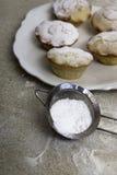 Chistmas mince pie z lodowacenie cukierem Zdjęcie Royalty Free