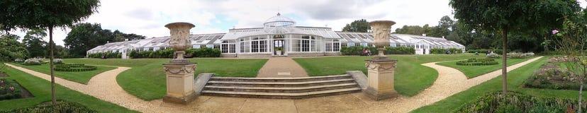 Chiswick公园山茶花房子的全景 库存图片