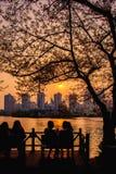 Chit-bate-papo da menina com opinião bonita do por do sol do lago Seokchon imagem de stock royalty free