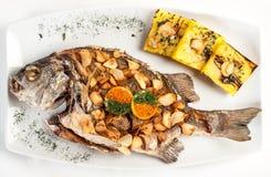 Chita al Ajo Läcker maträtt av peruansk kokkonst som baseras på fisk och vitlök royaltyfri bild