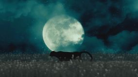 Chita ou pantera preta que correm com a noite em um fundo da Lua cheia ilustração do vetor