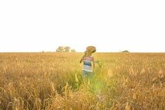 Chitarra acustica della tenuta del musicista e camminare nei campi di estate al tramonto fotografie stock