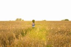 Chitarra acustica della tenuta del musicista e camminare nei campi di estate al tramonto fotografia stock libera da diritti