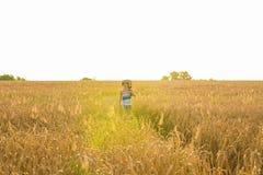 Chitarra acustica della tenuta del musicista e camminare nei campi di estate al tramonto immagini stock