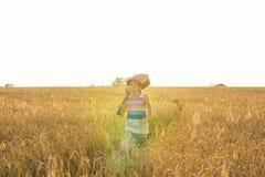 Chitarra acustica della tenuta del musicista e camminare nei campi di estate al tramonto fotografie stock libere da diritti
