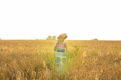 Chitarra acustica della tenuta del musicista e camminare nei campi di estate al tramonto immagine stock libera da diritti
