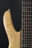 Chitarra bassa elettrica Fotografie Stock