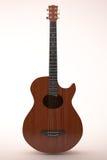 Chitarra di legno classica illustrazione vettoriale