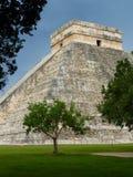 Chitchen Itza pyramid with trees Royalty Free Stock Photo