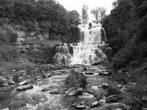 Chittenango понижается черно-белый стоковые фото